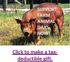 Link to make a tax deductible gift.