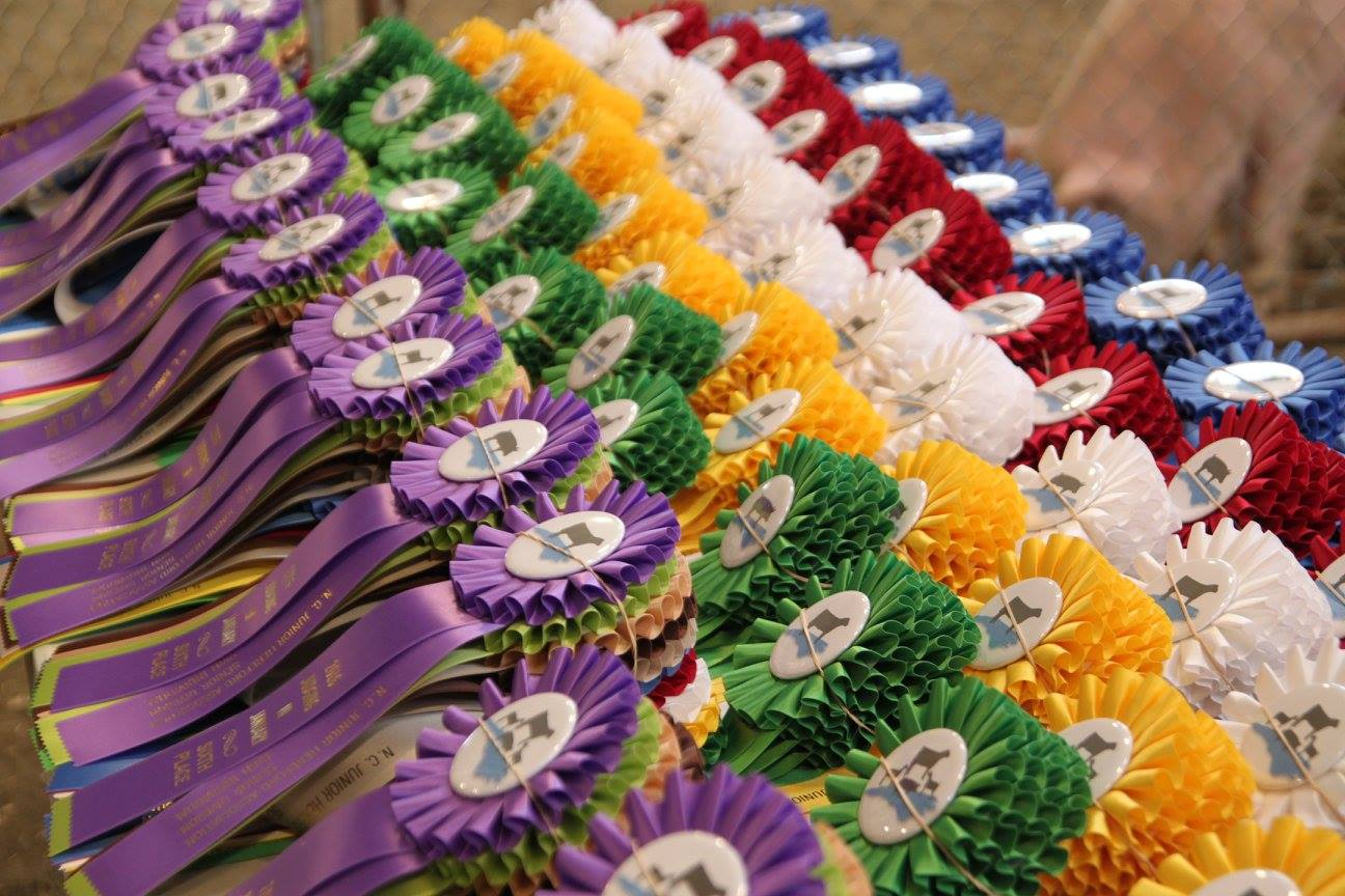 Image of award ribbons