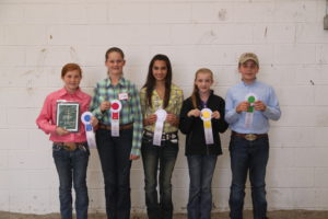 Cover photo for Southeastern Regional & NC State Fair Contest Results