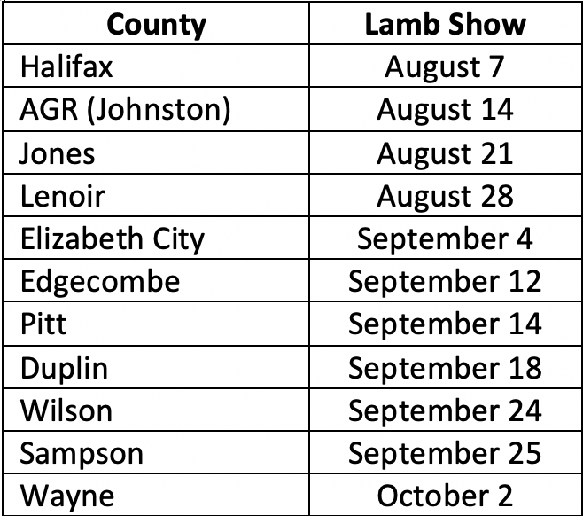 Lamb Show Schedule